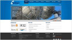 Developpement de site web SHSP, Société Halwani de Sablage et Peinture